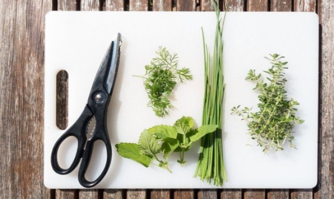 how to create a kitchen herb garden
